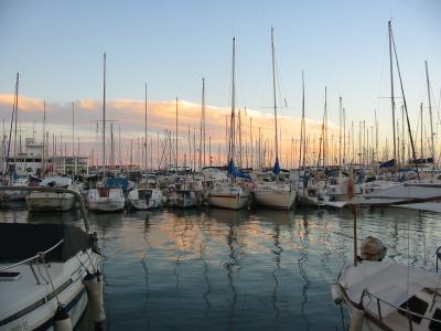 De Pesca en la Bahía de Palma.
